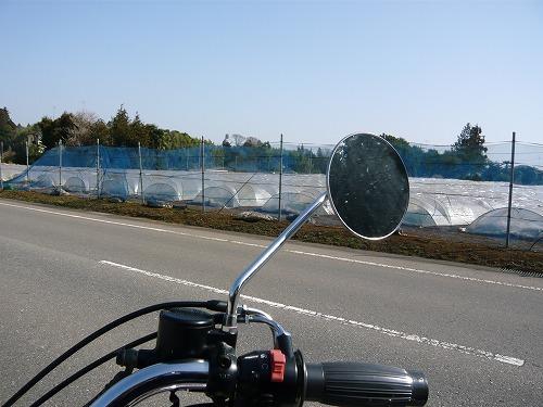 ushiku_15.jpg