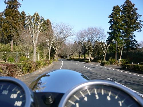 ushiku_25.jpg