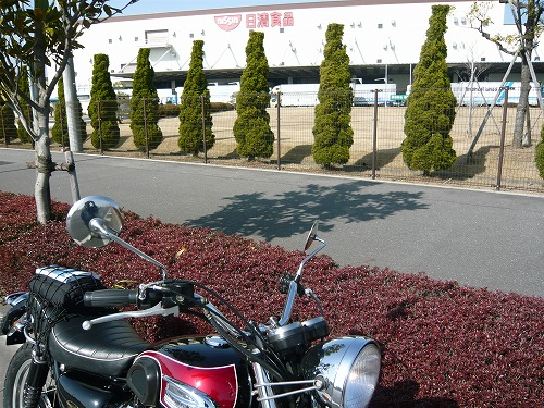 ushiku_8.jpg